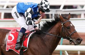 Protectionist_Melbourne_Cup_win_620